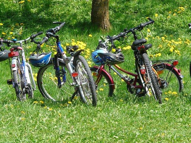 Čtyři kola postavená vedle sebe na louce u lesa